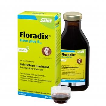 Floradix® Eisen plus B12 vegan 250ml